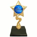 купить Статуэтка Золотая Звезда За освоение офисной техники цена, отзывы