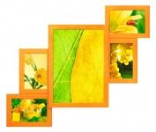 купить Деревянная мультирамка Венге персиковая на 5 фото цена, отзывы