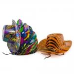 купить Шляпа Ковбоя пластик с принтом цена, отзывы