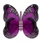 купить Крылья Бабочки пятнистые (малиновые) 42х48см цена, отзывы