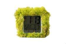купить Эко-часы хамелеон цена, отзывы