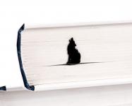 купить Закладка для книг Волк на луну цена, отзывы