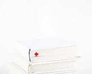 купить Закладка для книг Кленовый лист цена, отзывы