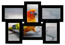 купить Мультирамка Классика на 6 фото (Black) цена, отзывы