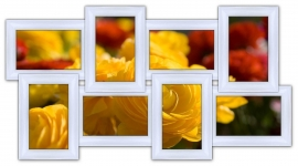 купить Мультирамка История на 8 фото (White) цена, отзывы