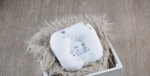 купить Подушка для новорожденных Путешественник цена, отзывы