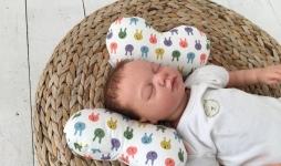 купить Детская подушка для новорожденных Butterfly Зверята цена, отзывы