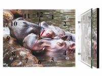купить Настенный часы Влюбленные бегемотики цена, отзывы