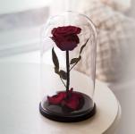 купить Роза в Колбе Багровый Гранат 7 карат цена, отзывы