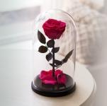 купить Роза в Колбе Родолит 7 карат цена, отзывы