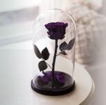 купить Роза в Колбе Фиолетовый Аметист 7 карат цена, отзывы