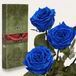 купить Три долгосвежих розы Cиний Сапфир 7 карат (короткий стебель) цена, отзывы