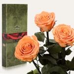 купить Три долгосвежих розы Золотистый Хризоберил 7 карат (короткий стебель) цена, отзывы