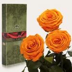 купить Три долгосвежих розы Оранжевый Цитрин 7 карат (короткий стебель) цена, отзывы