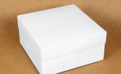 купить Подарочная коробка White 20х20х10 см  цена, отзывы