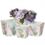 купить Комплект коробок для цветов Beati (4 шт.) цена, отзывы