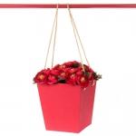 купить Коробка для цветов Tinki Red цена, отзывы