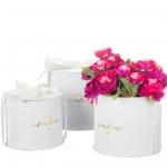 купить Набор коробок для цветов Лучик White (3 шт.) цена, отзывы
