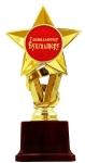 купить Статуэтка Золотая Звезда Гениальному бухгалтеру цена, отзывы