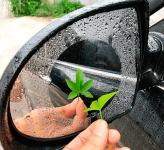 купить Наклейка антидождь для зеркал авто цена, отзывы