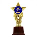 купить Статуэтка Золотая Звезда Лучшему папе цена, отзывы