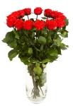 фото 1870  Три долгосвежих розы Алый Рубин 5 карат на коротком цена, отзывы