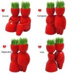 купить Керамический горшок с семенами красный  цена, отзывы