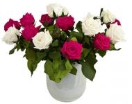 фото 1822  Долгосвежая роза Малиновый Родолит в подарочной упаковке (не вянут от 6 месяцев до 5 лет) цена, отзывы