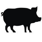 фото 3469  Наклейка Свинка Big  цена, отзывы