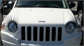 фото 689  Реснички для вашего авто: гибкие, крепятся на разные формы фар цена, отзывы