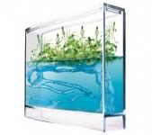 фото 717  Муравьиная ферма аквариум (Супер Муравейник) Big цена, отзывы