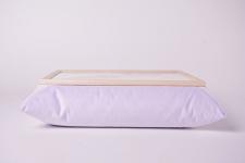 фото 10136  Поднос с подушкой Синицы цена, отзывы
