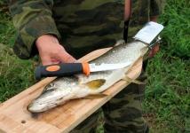 фото 3335  Доска для разделки рыбы с зажимом (бук) цена, отзывы