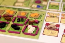 фото 5455  Настольная игра Агрикола цена, отзывы