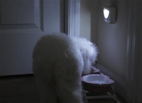 фото 2730  Светодиодная лампа Mighty Light c датчиком движения цена, отзывы
