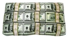 фото 770  Подушка Пачки Евро и Долларов цена, отзывы