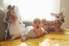 фото 3633  Подушка Шустрый кролик цена, отзывы