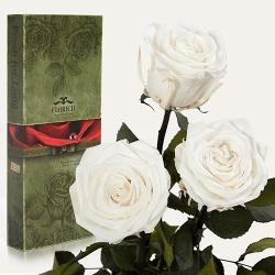 купить Три долгосвежих розы Белый Бриллиант в подарочной упаковке (не вянут от 6 месяцев до 5 лет) цена, отзывы
