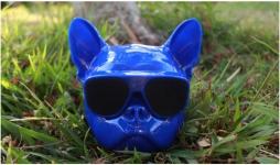 фото 25152  Беспроводная колонка Бульдог Blue mini цена, отзывы