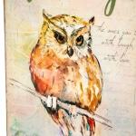 фото 26014  Книги сейф с кодовым замком Owl 26 см цена, отзывы