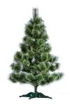 купить Сосна распушенная высотой 1.70 метра цена, отзывы