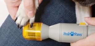 фото 3771  Точилка для когтей у животных цена, отзывы