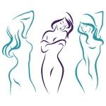 купить Наклейка Декоративная Silhouette цена, отзывы