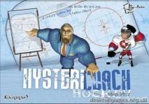 купить Настольная игра Hystericoach Hockey цена, отзывы
