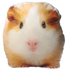 купить Подушка Морская свинка цена, отзывы