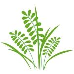 купить Виниловая Наклейка Herb цена, отзывы