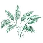 купить Виниловая Наклейка Palm Leaves цена, отзывы