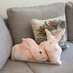 фото 3634  Подушка Кролики цена, отзывы