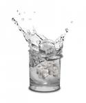 фото 2483  Формы для льда Черепки цена, отзывы