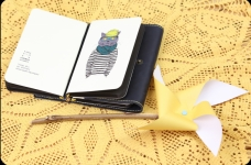 фото 6312  Тетрадь Hipster cat Моряк mini  цена, отзывы